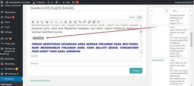 PLUGIN WP ALL IMPORT DAN POSTING RIBUAN ARTIKEL